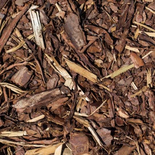 Mulching: Should You Remove Old Mulch?