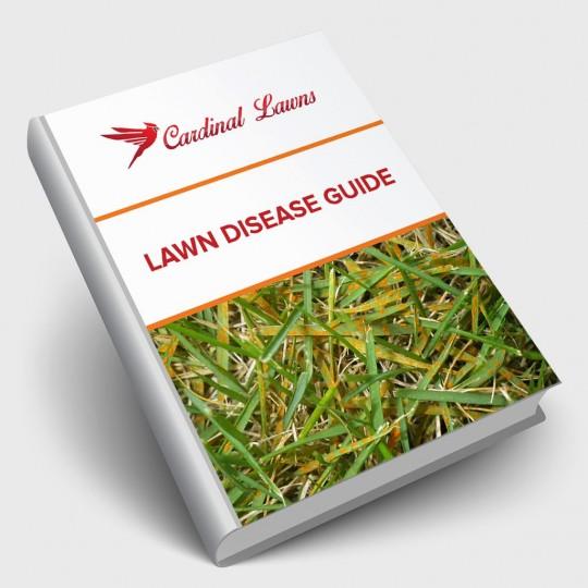 Lawn Disease Guide