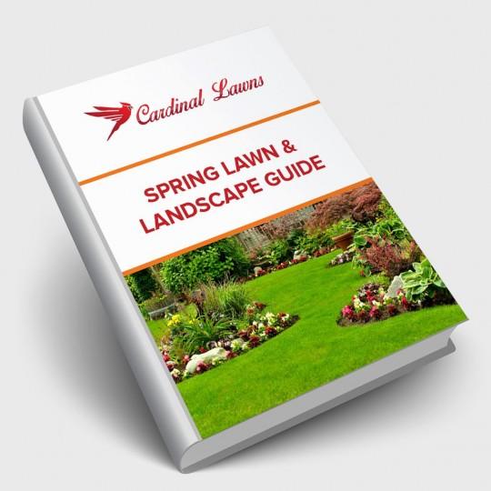 Spring Lawn & Landscape Guide