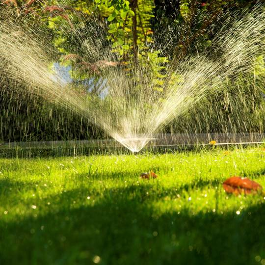 Telltale Signs That It's Time to Water the Lawn