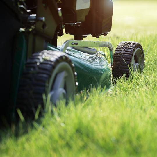 Finding the Right Cutting Height for Your Lawn Mower