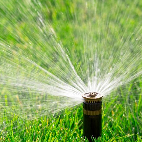 How Much to Water the Lawn