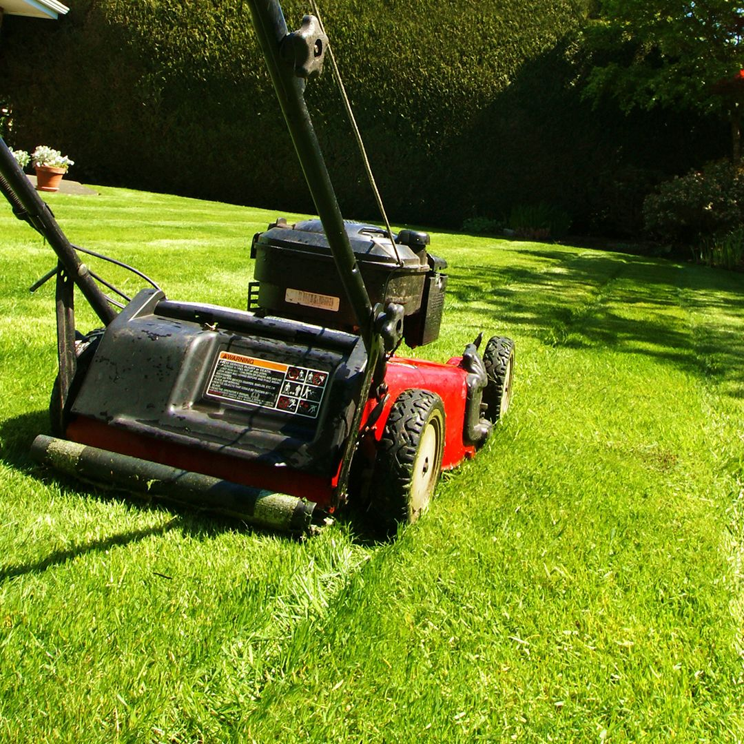 Grass cutting tips a few mowing basics for beginners for Lawn mower cutting grass