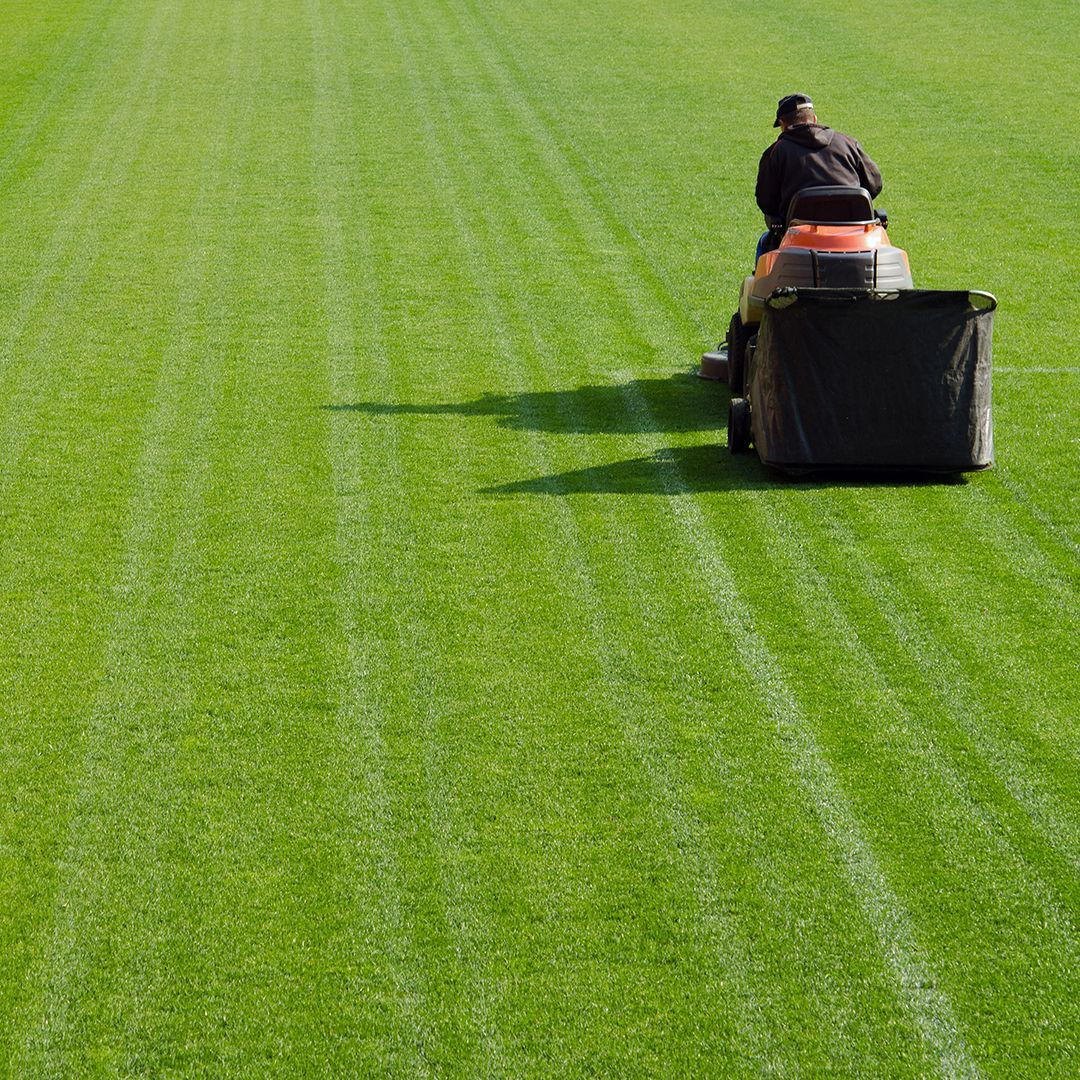grass cutting tips: a few mowing basics for beginners