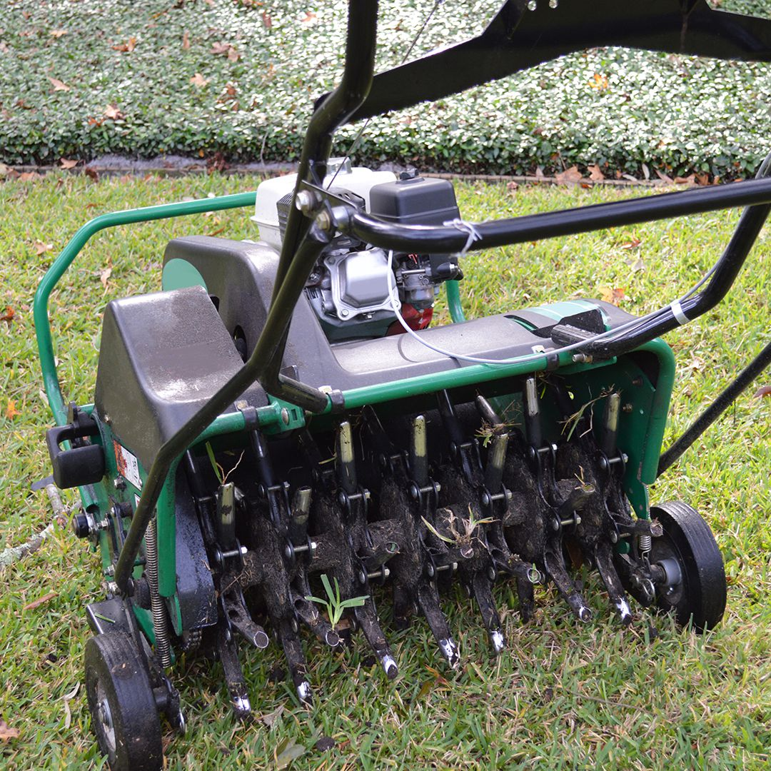 Solid Or Hollow Tine Aeration Cardinal Lawns