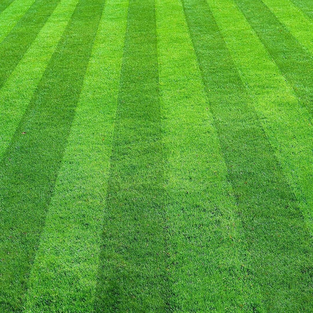 Best Lawn Mowing Patterns