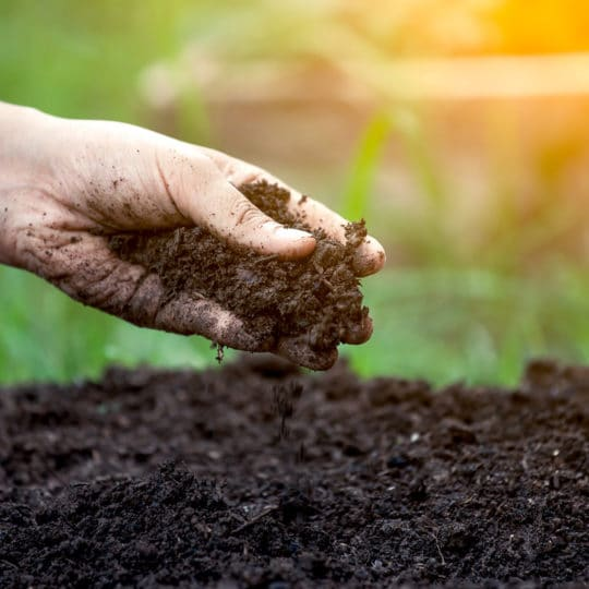 How Important is Soil Testing