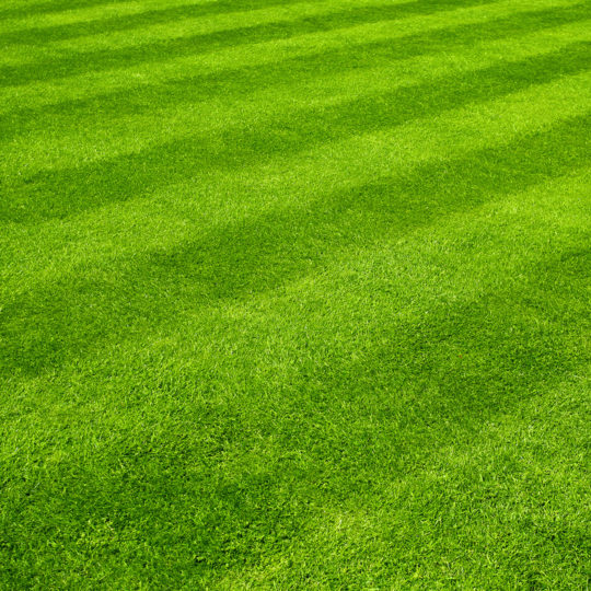 Best Lawn Mowing Patterns