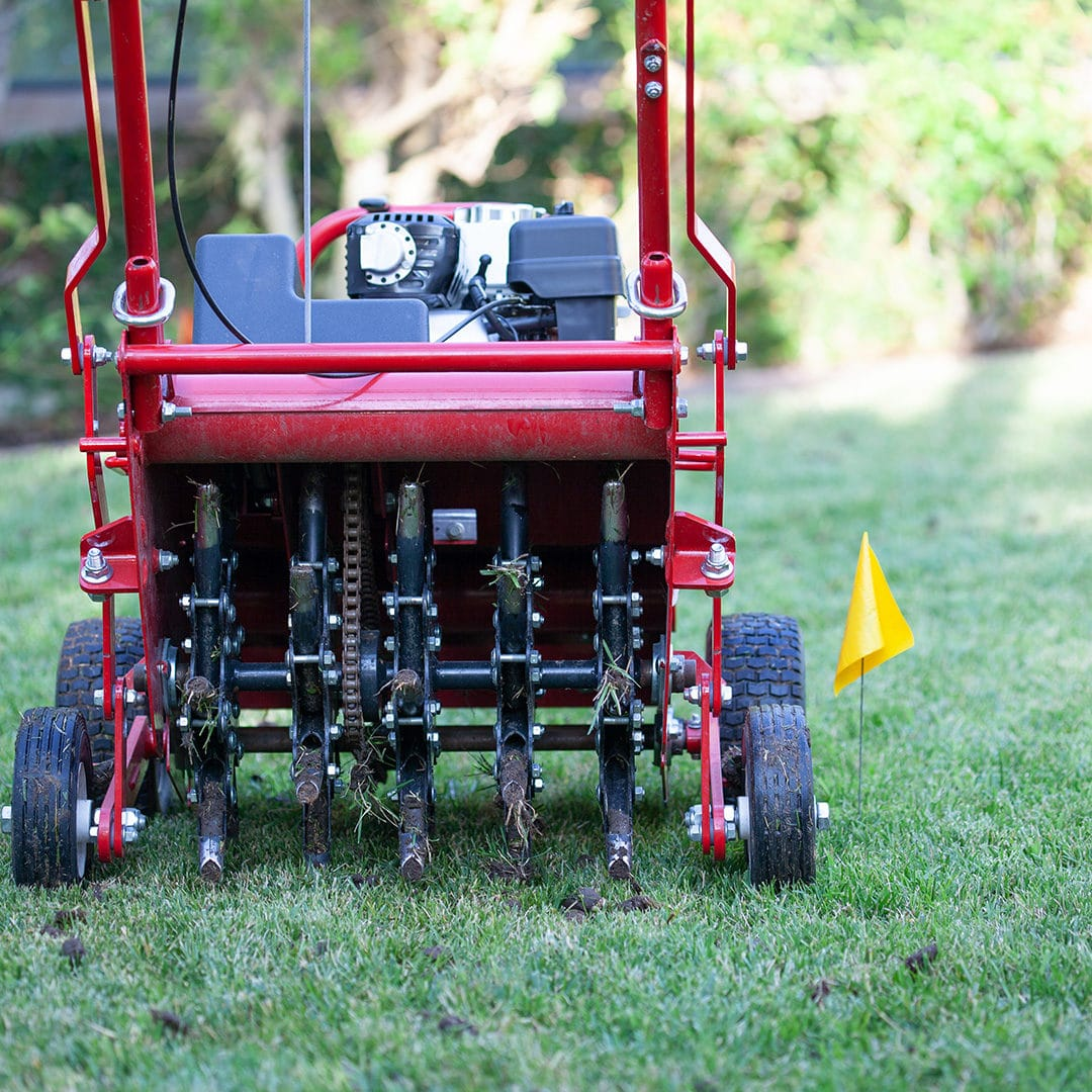 Aerating Your Lawn In The Winter Cardinal Lawns