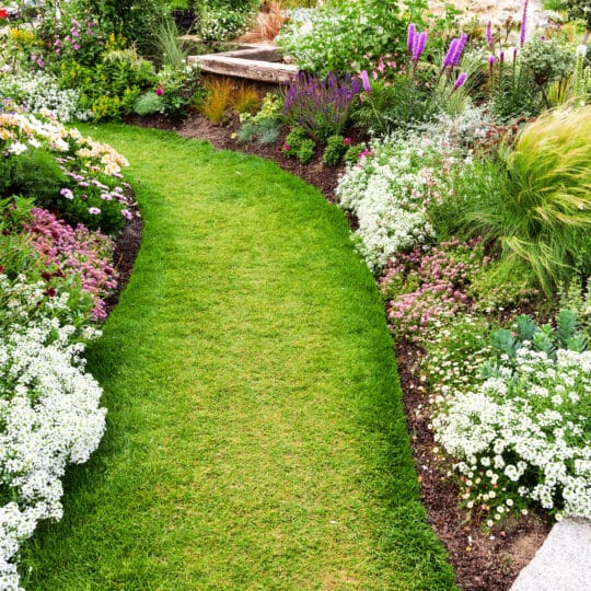 Landscaper Lawn Tips List for Spring